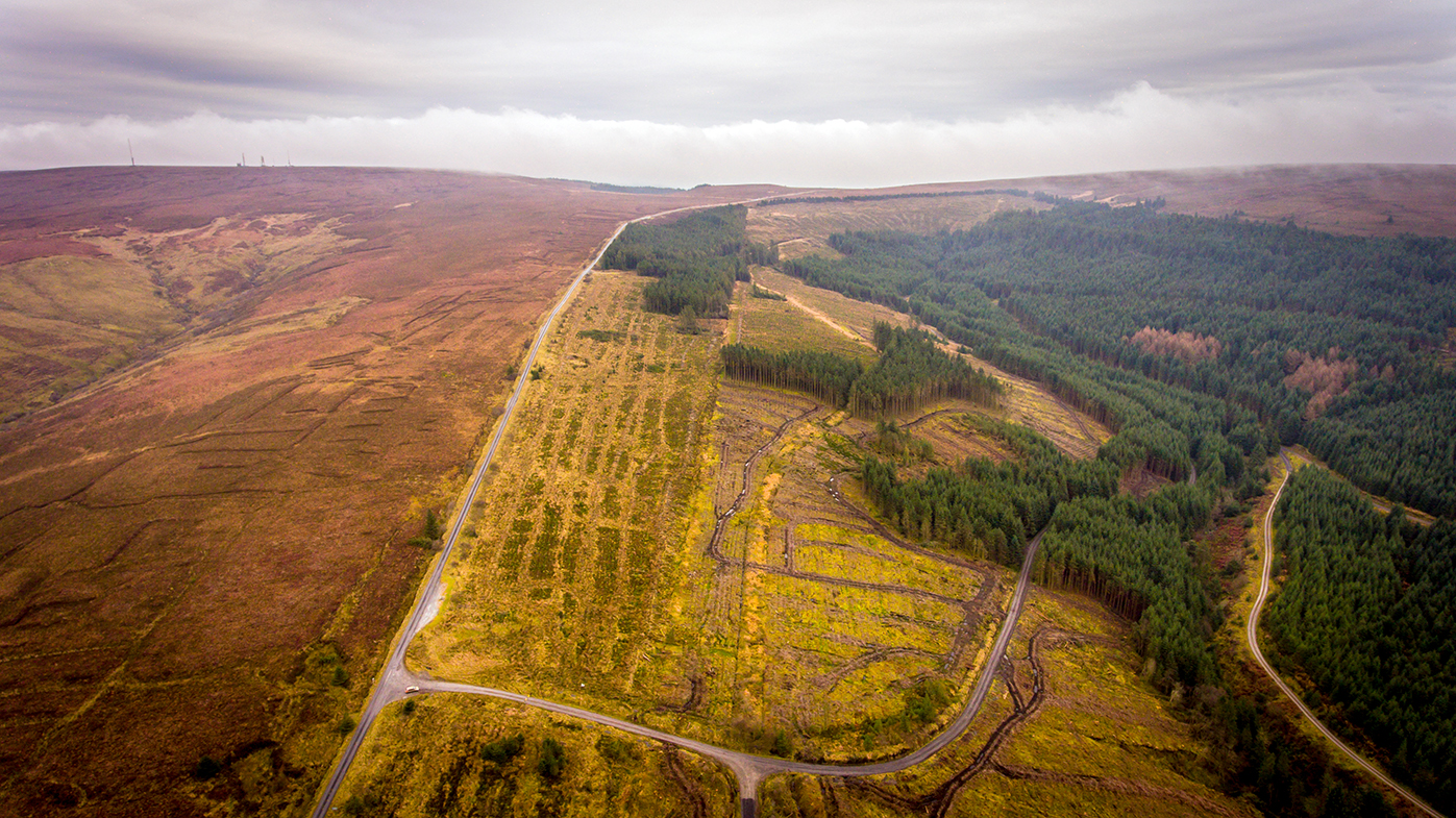The top of the mountain with the Slieve Bloom nature reserve in the distance.