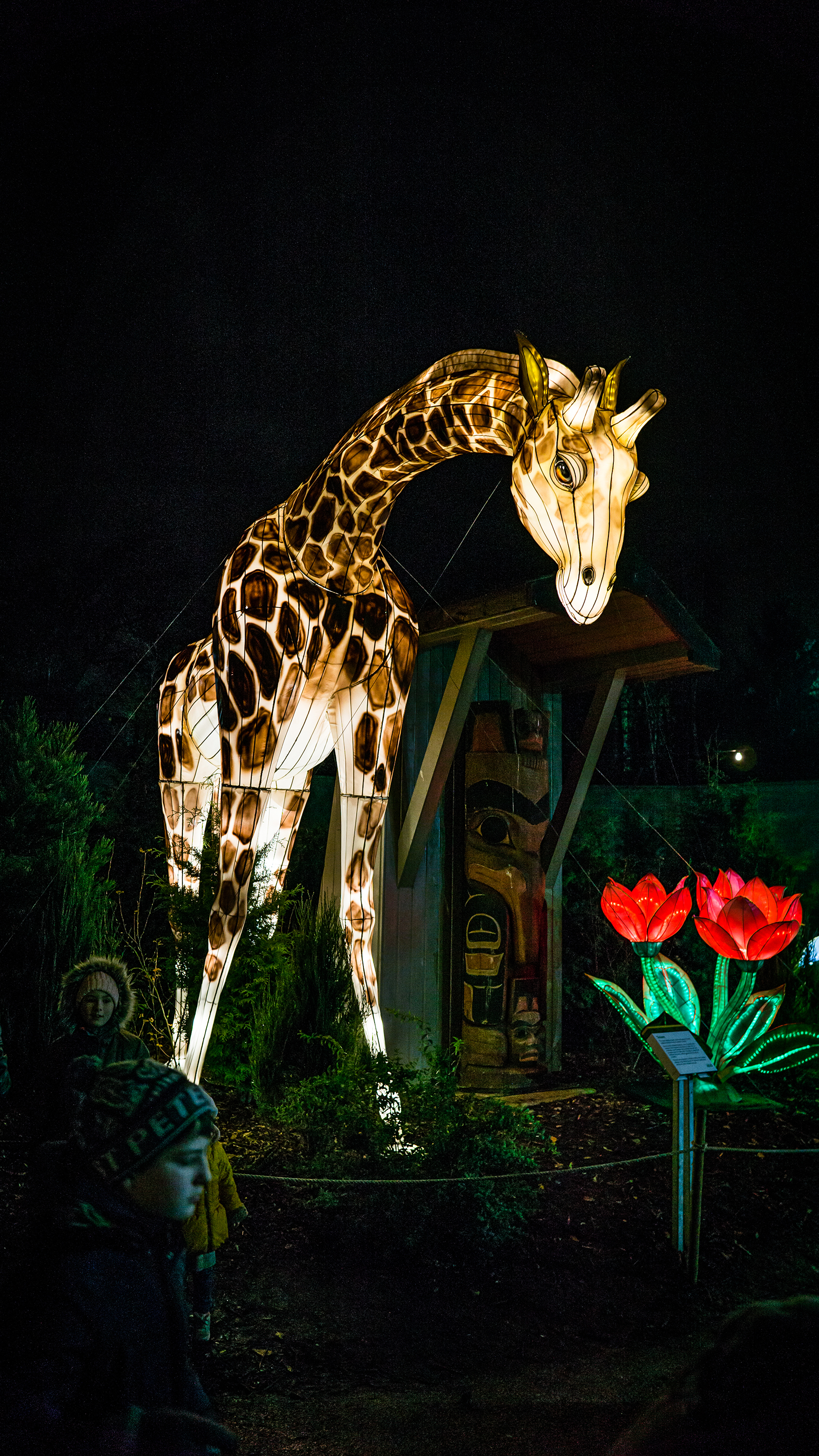 Giraffe light Sculpture
