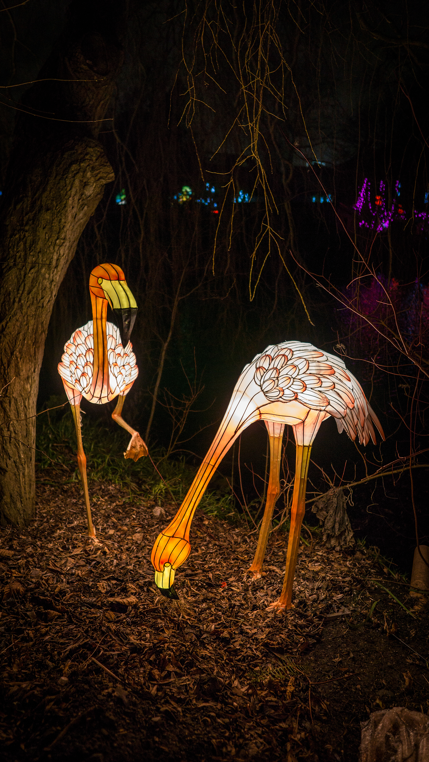 Flamingo light sculptures