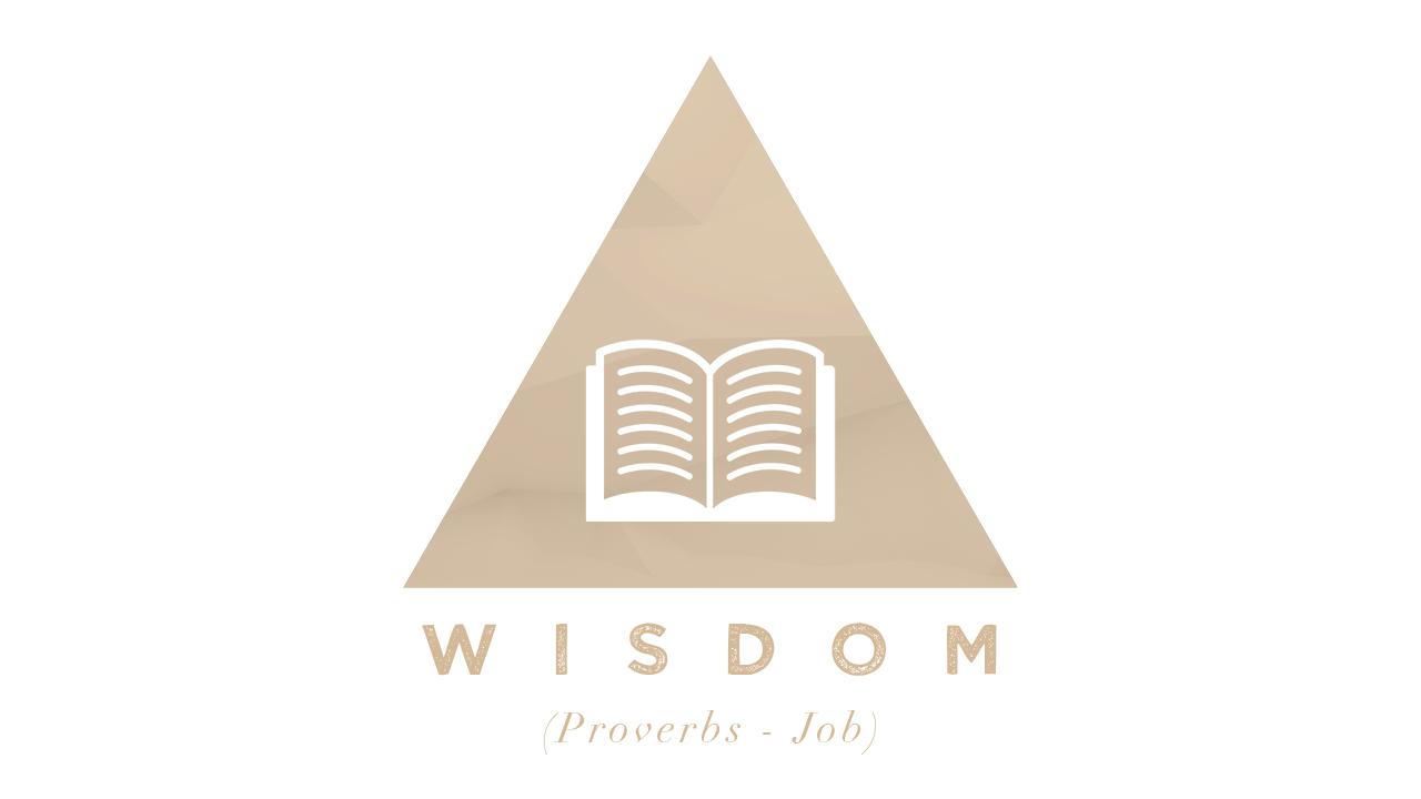 WISDOM Slide small.jpg