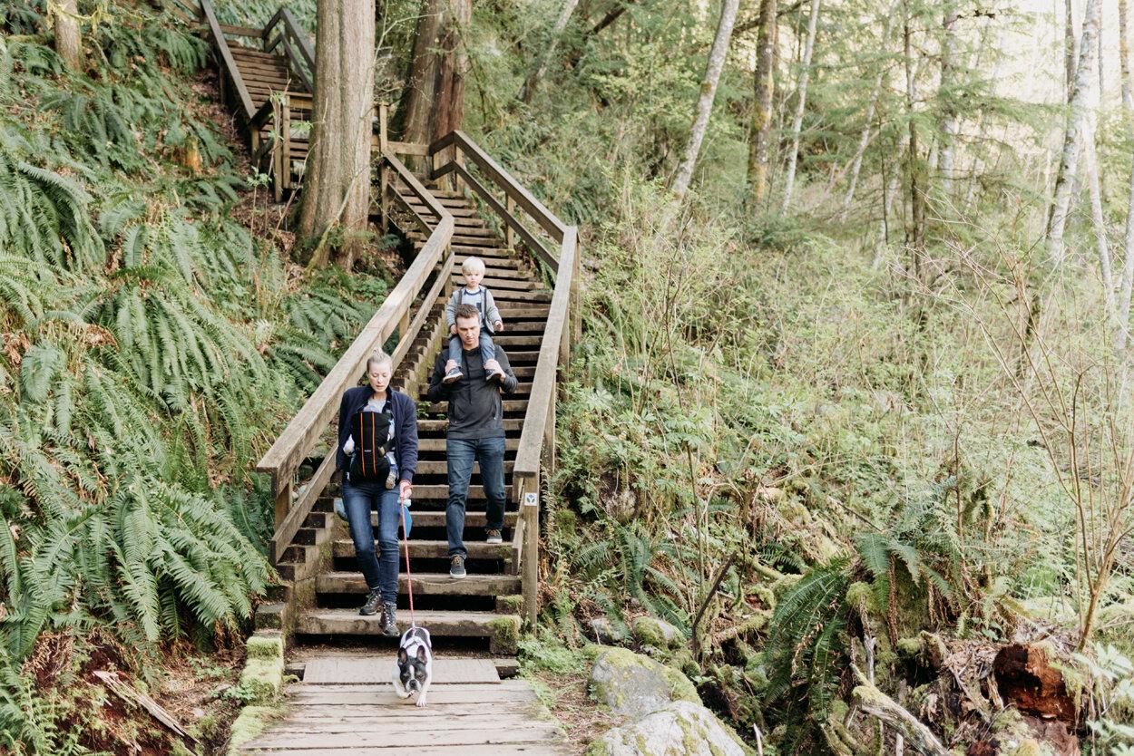 lynn-valley-family-hike-1.jpg