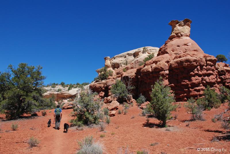 Jerud hiking with tybee and tyki.
