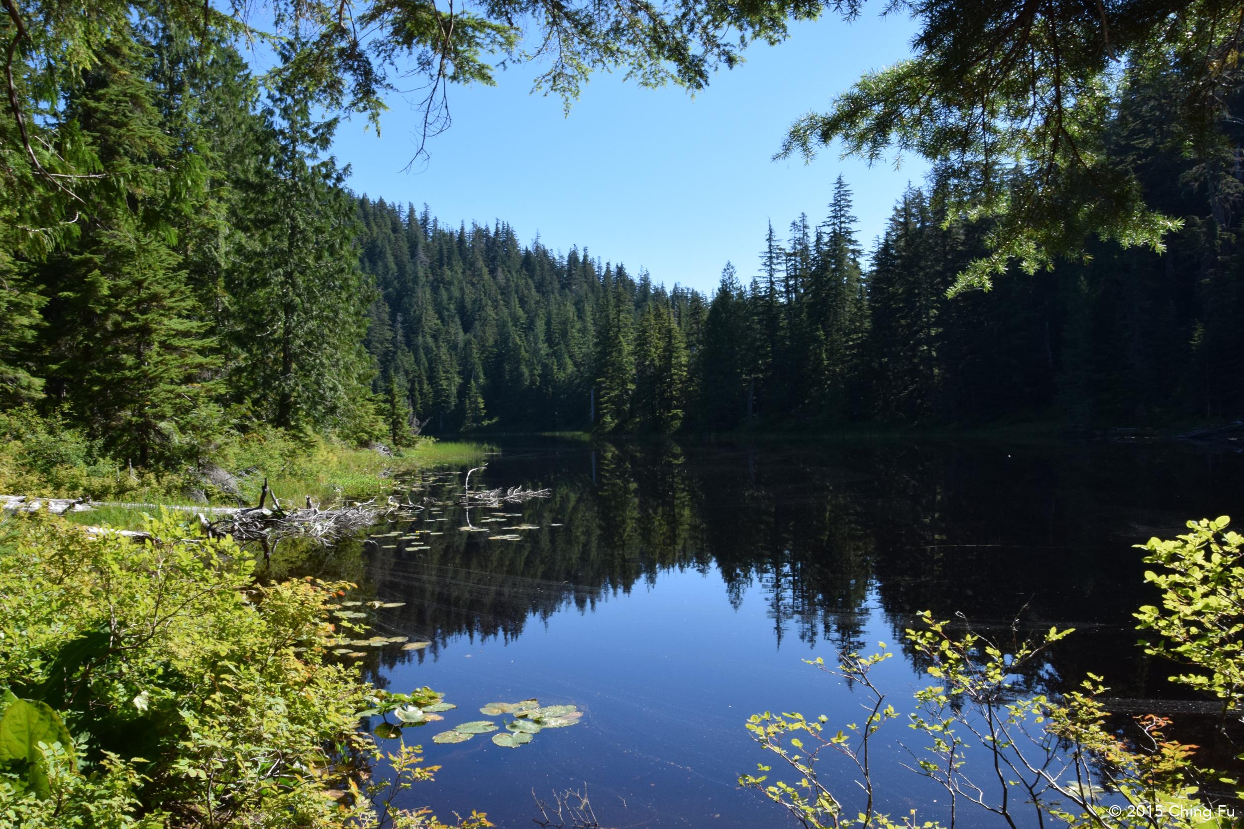 Lower Ashland Lake