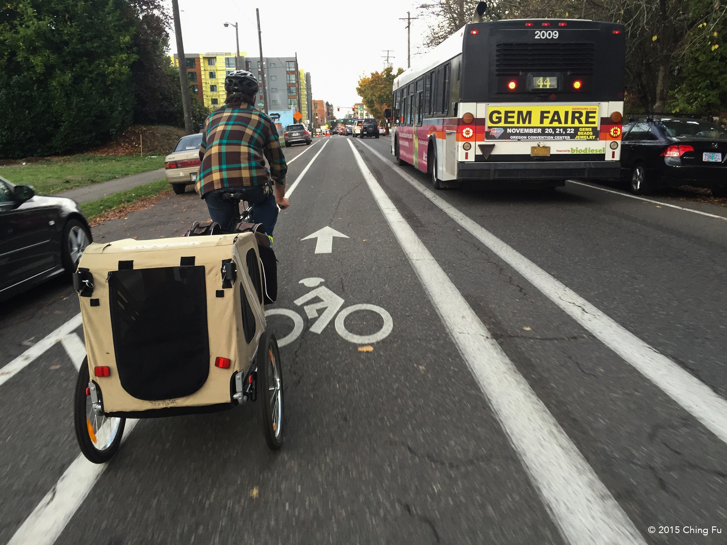 Another shot of Portland's bike lane.