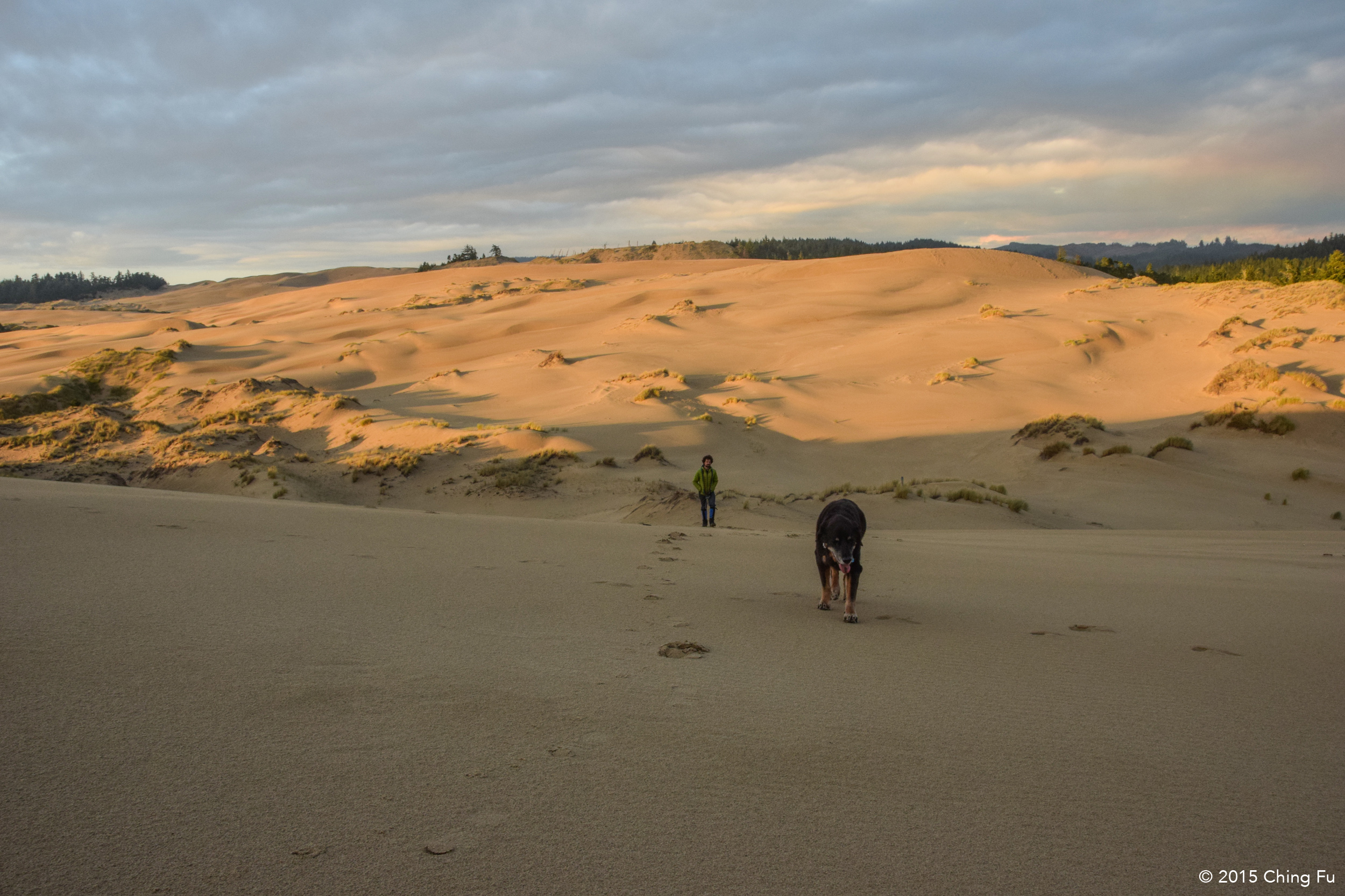 Tybee decided she  had  to hike up the tallest dune with me, leaving Jerud in the dust.