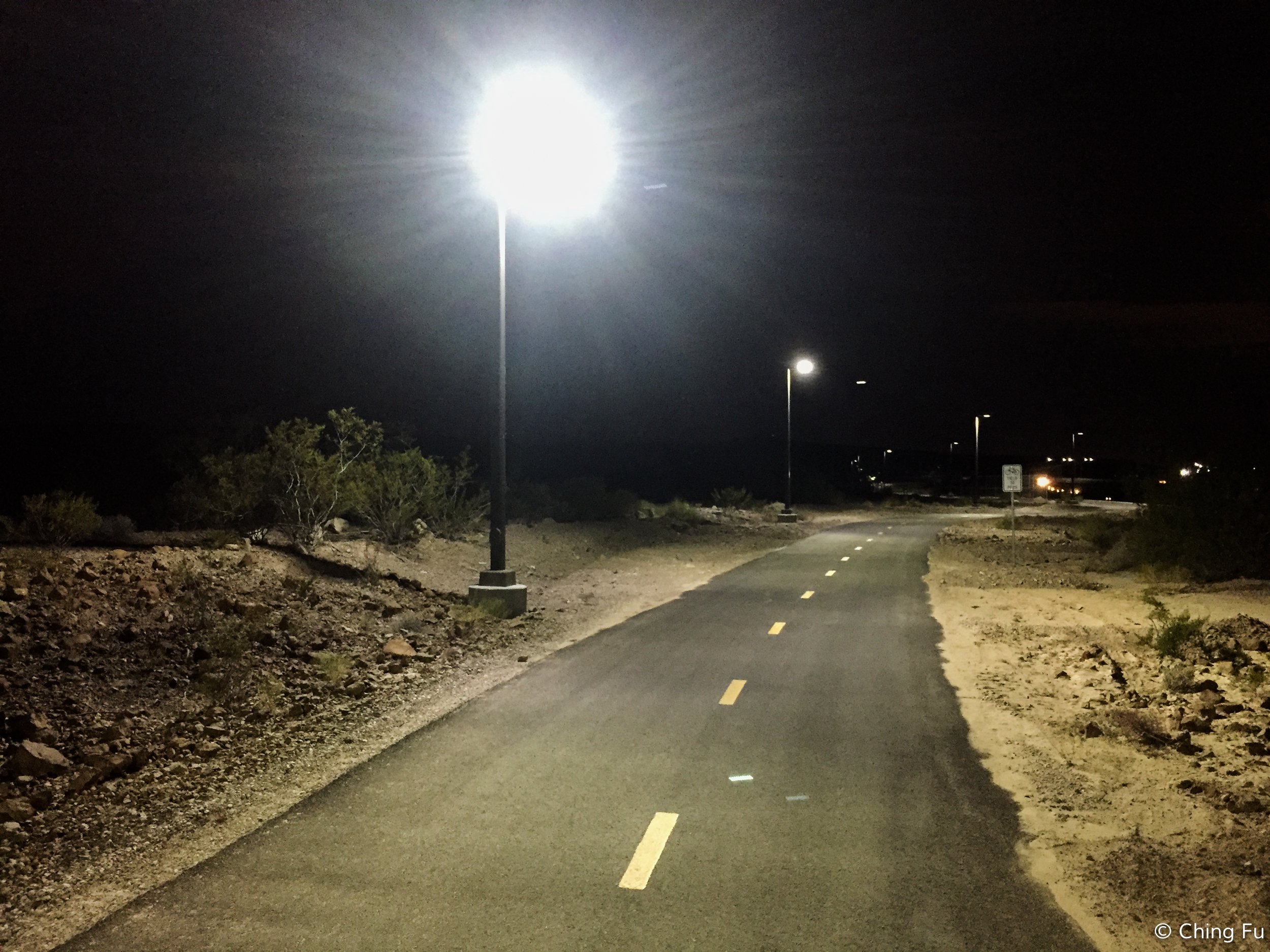 Best path lights ever - the lights are on dimly all the time, but brighten when they detect motion.