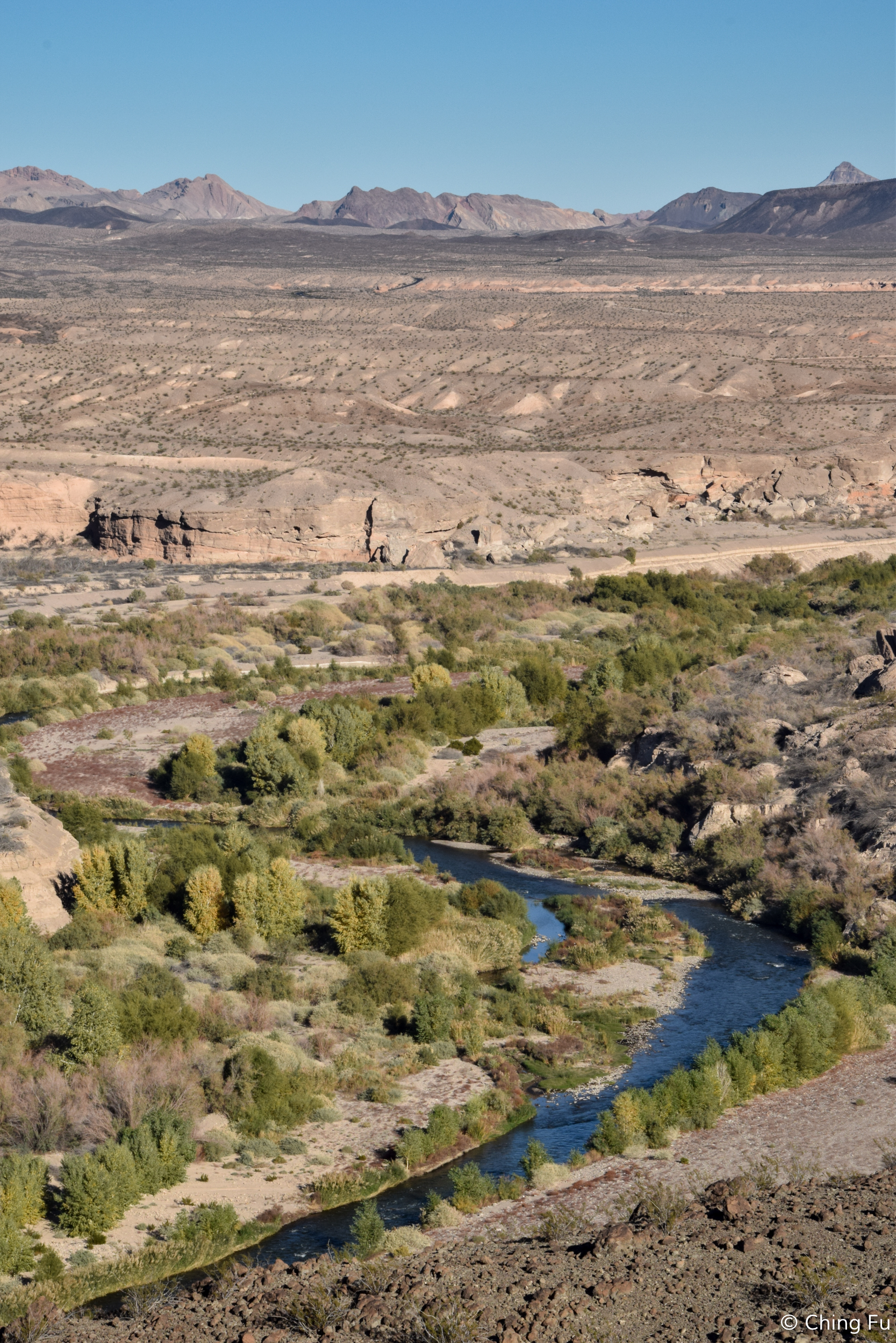 View of Las Vegas Wash from the trail.