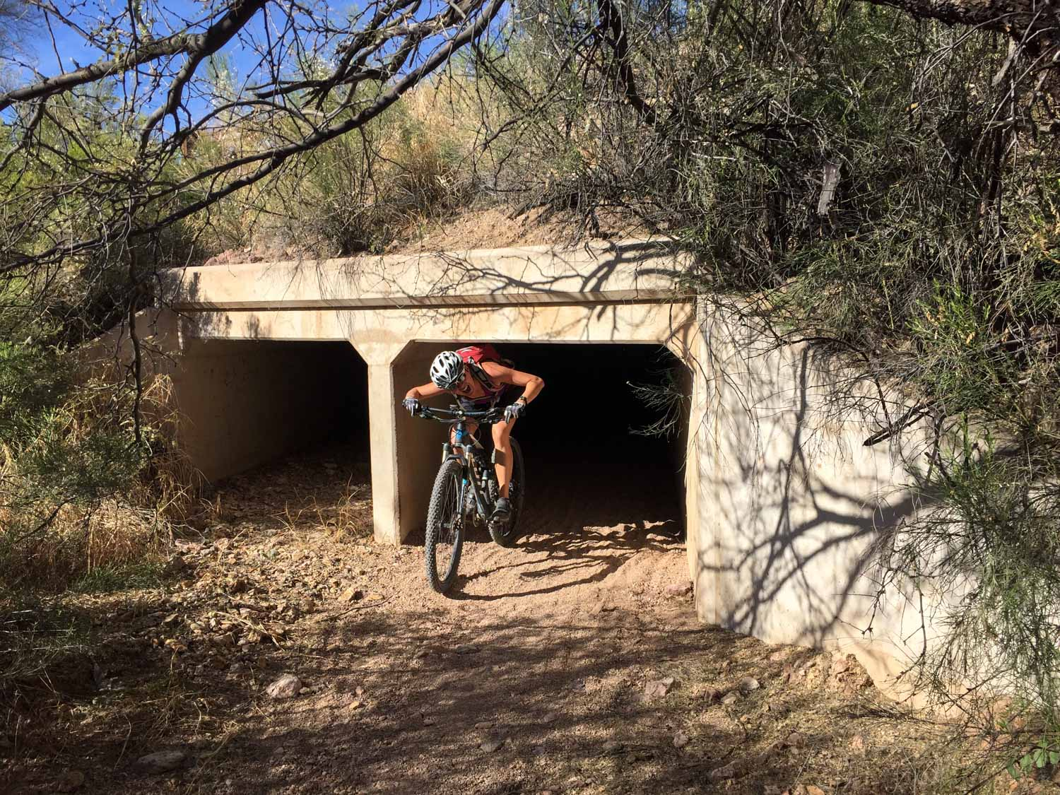 The tunnel connecting Tucson Mountain Park to Robles Junction was seriously this low!