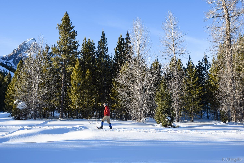 Snowshoeing at Taggart Lake trailhead.