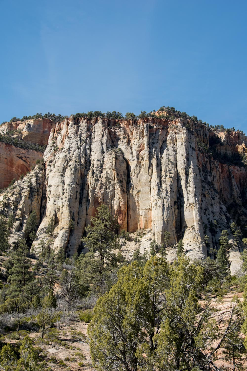 View from Zion-Mount Carmel Highway.