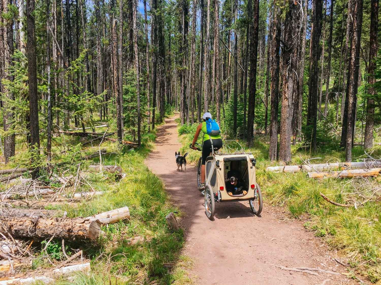 Biking Morrell Falls Trail.