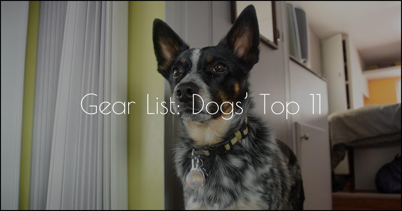 top-dog-gear-list-