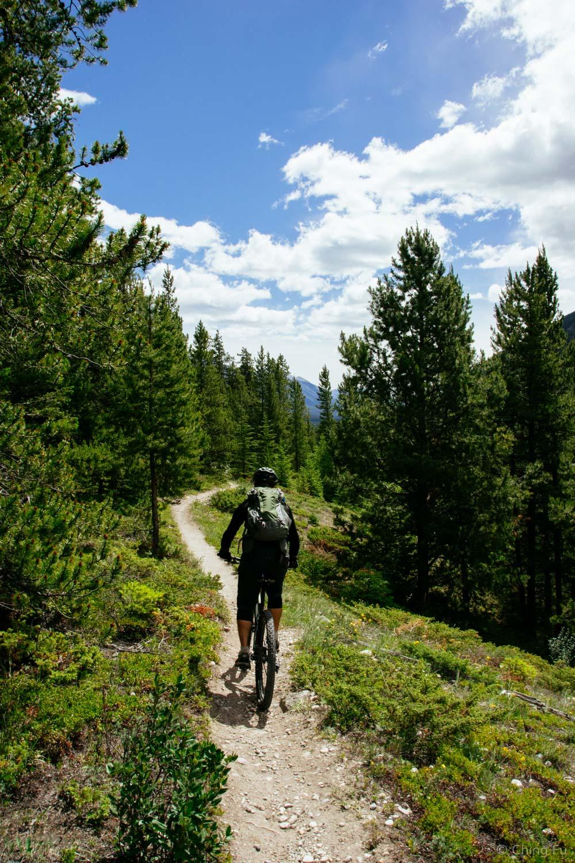 Jerud mountain biking in Banff.
