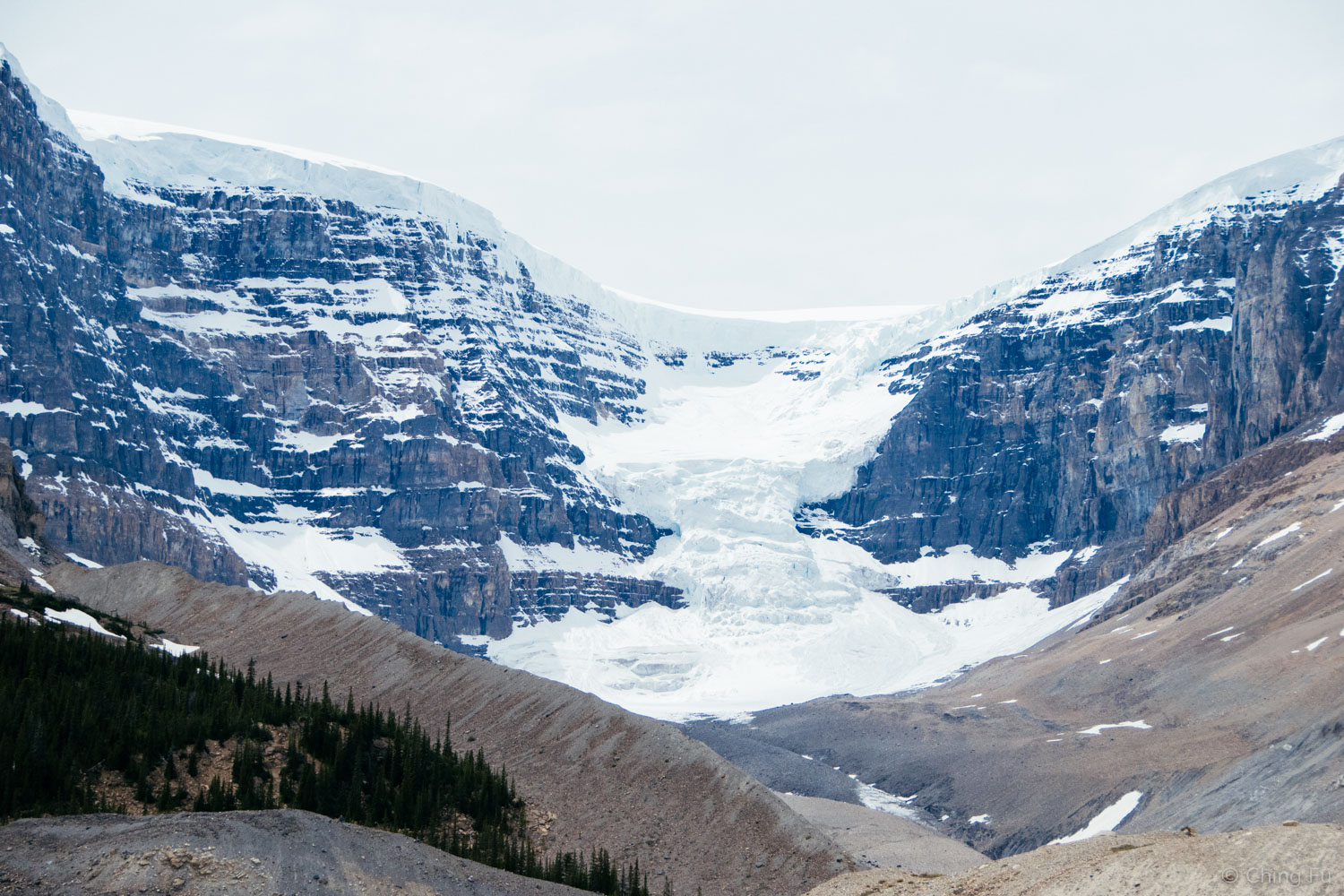 Field of the Columbia Icefield seen from Wilcox Pass trail on this trip.