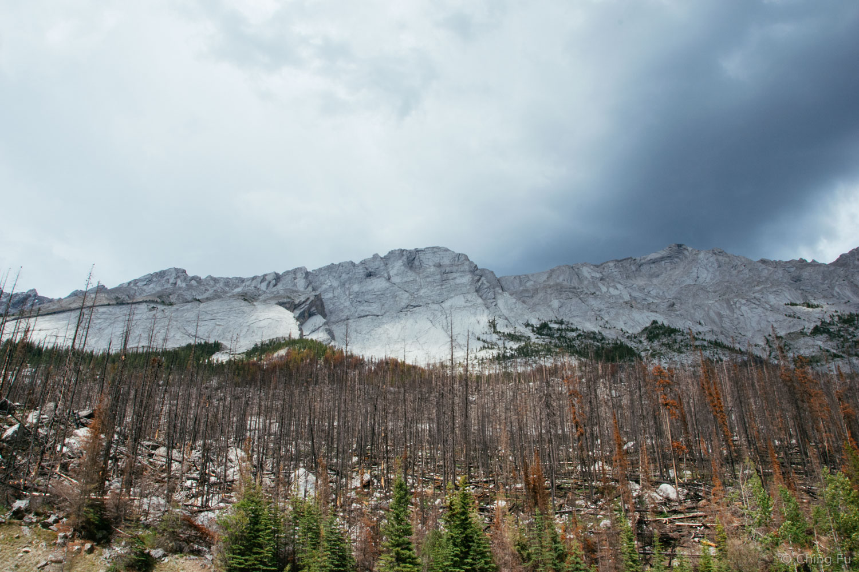 Colin Mountain range in Maligne Canyon.
