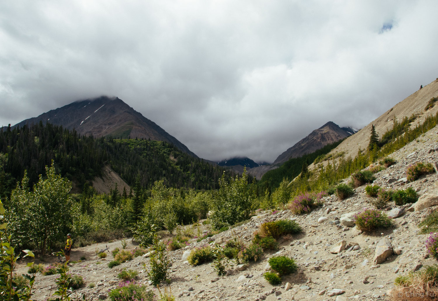 Those mountains are located within Kluane National Park.