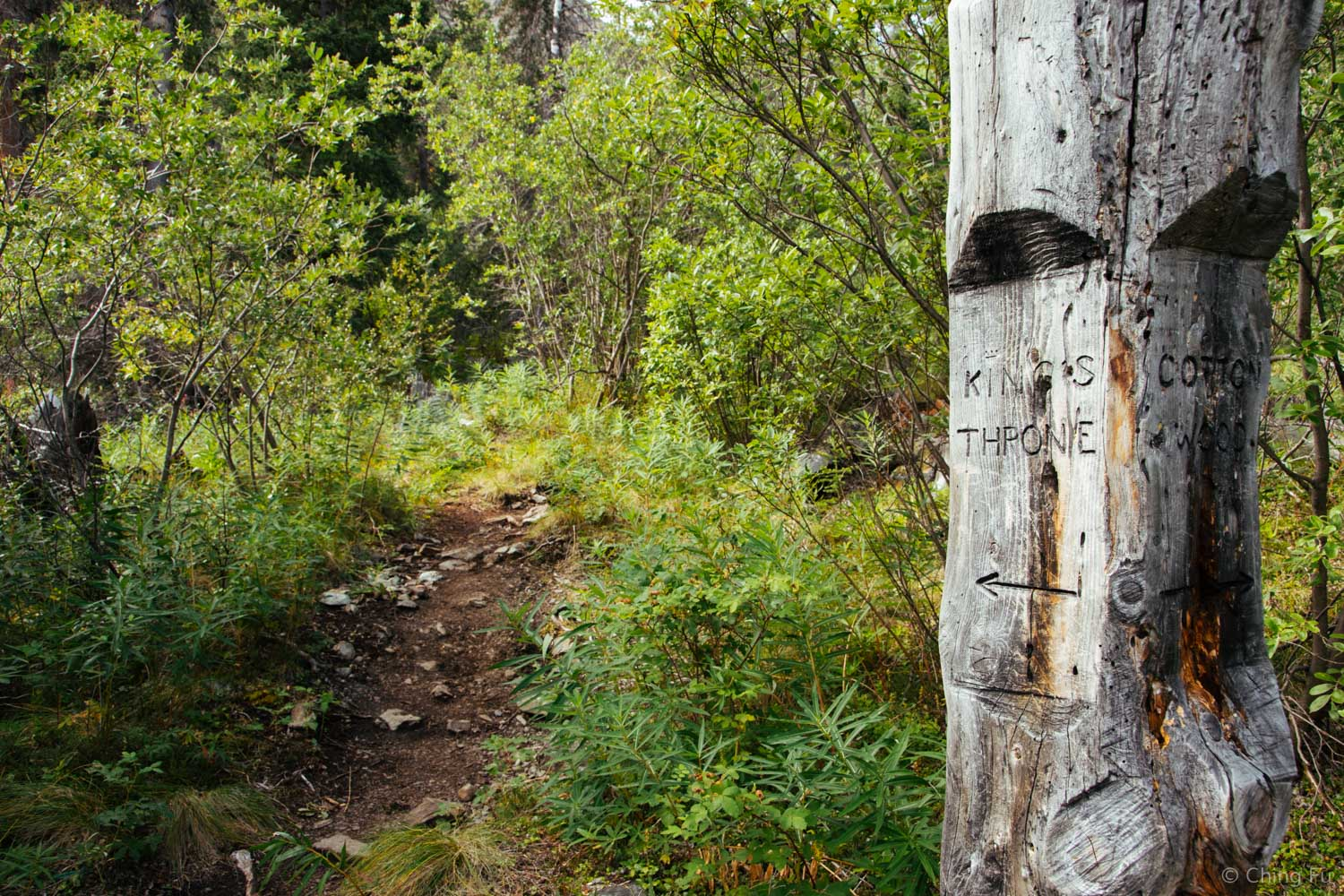 The beginning of King's Throne trail.