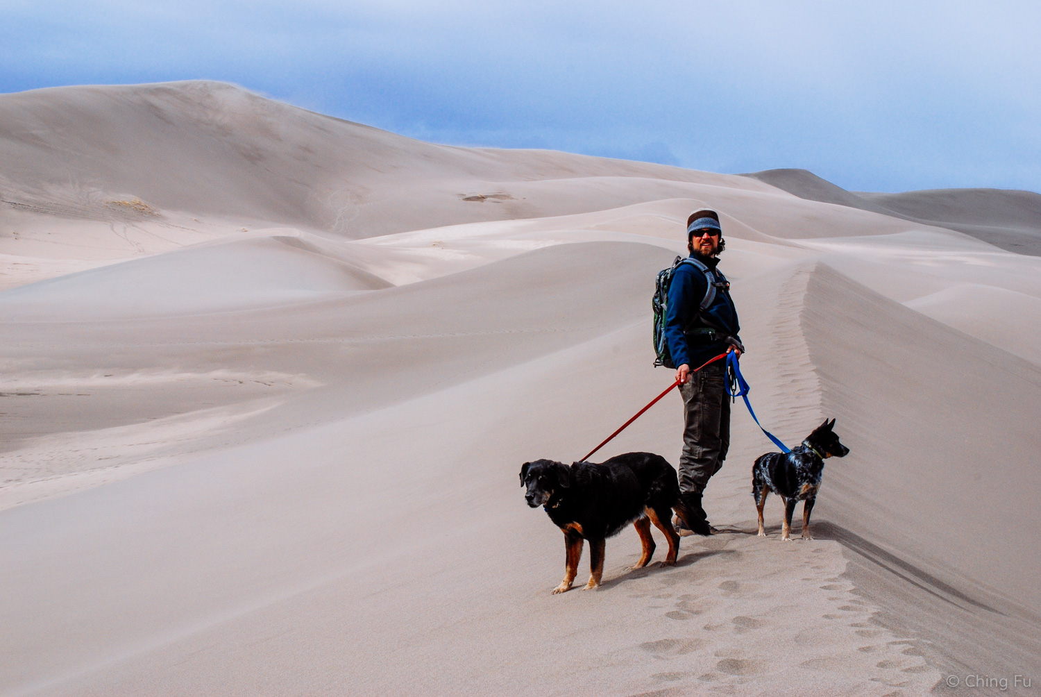 Great Sand Dunes National Park  actually allows dogs on the sand dunes up to the first tall ridge of dunes between High Dune and Castle Creek Picnic Area.