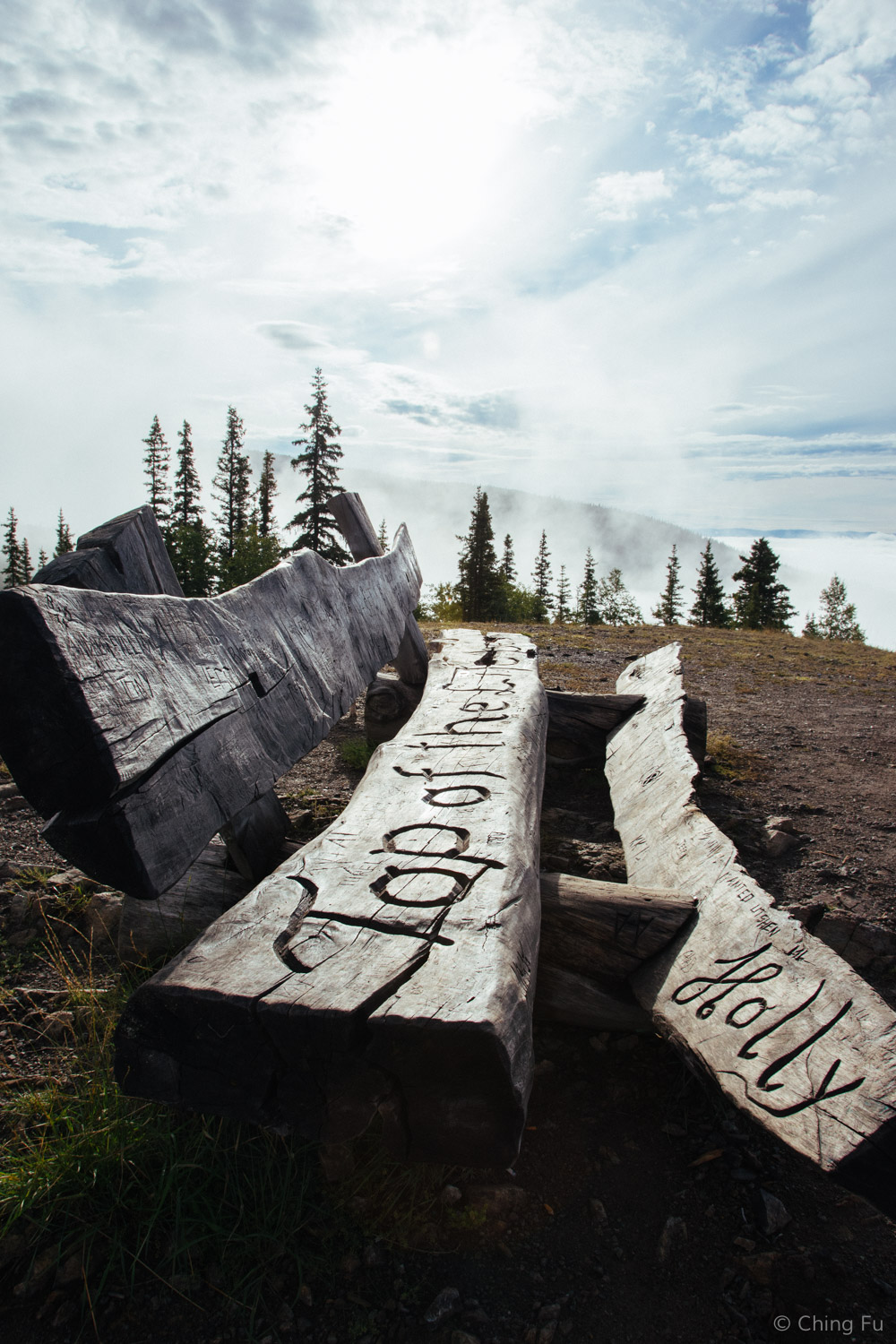 """""""Top of the World"""" bench at the top of Midnight Dome."""