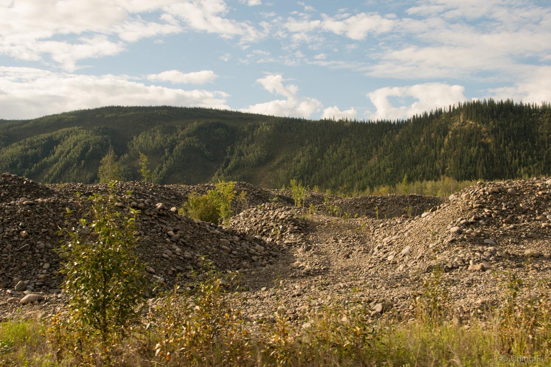 Gravel piles from gold dredging.