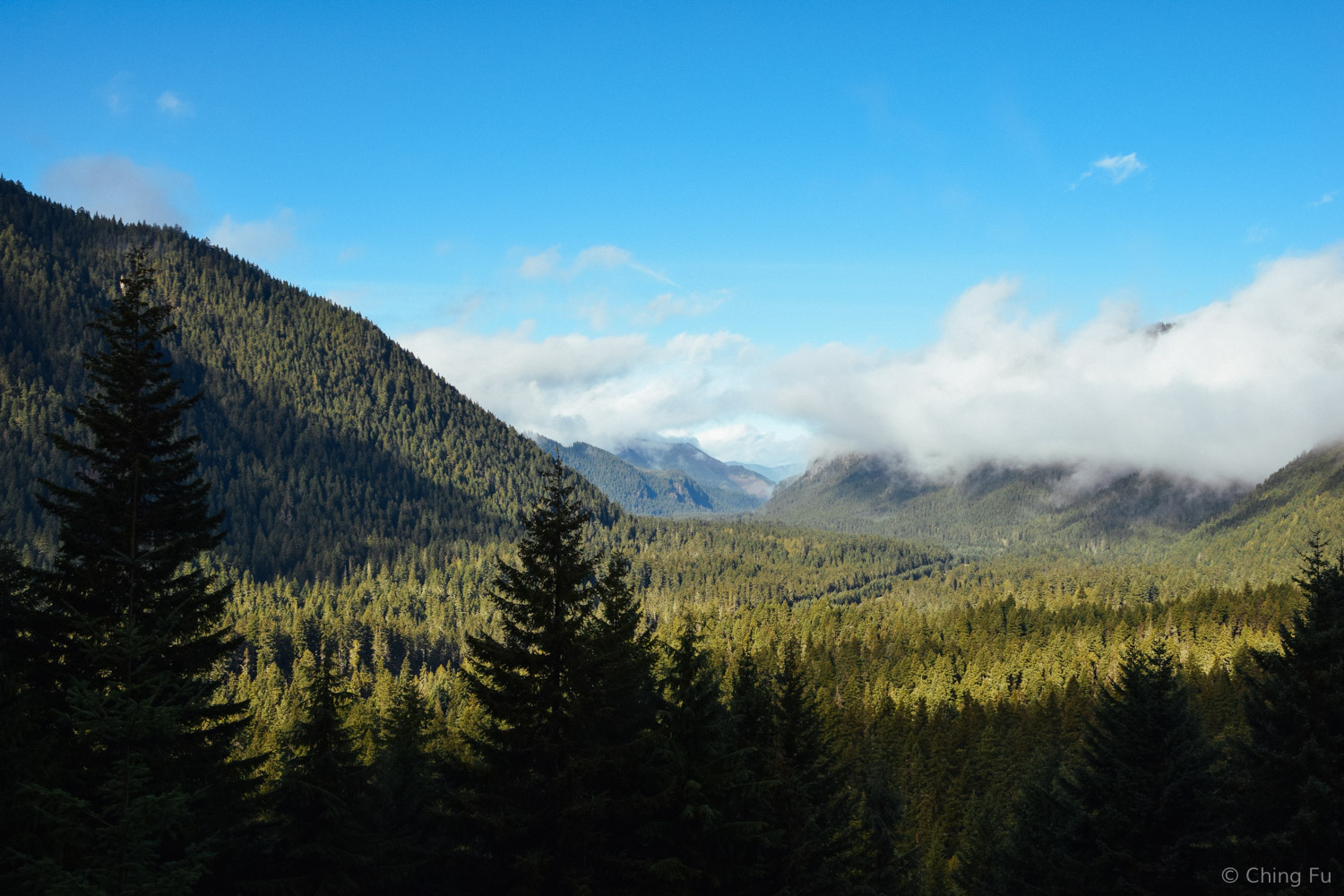 This is the valley you have to drive through to get to Crystal Mountain Resort, which is located in Mt. Baker-Snoqualmie National Forest.