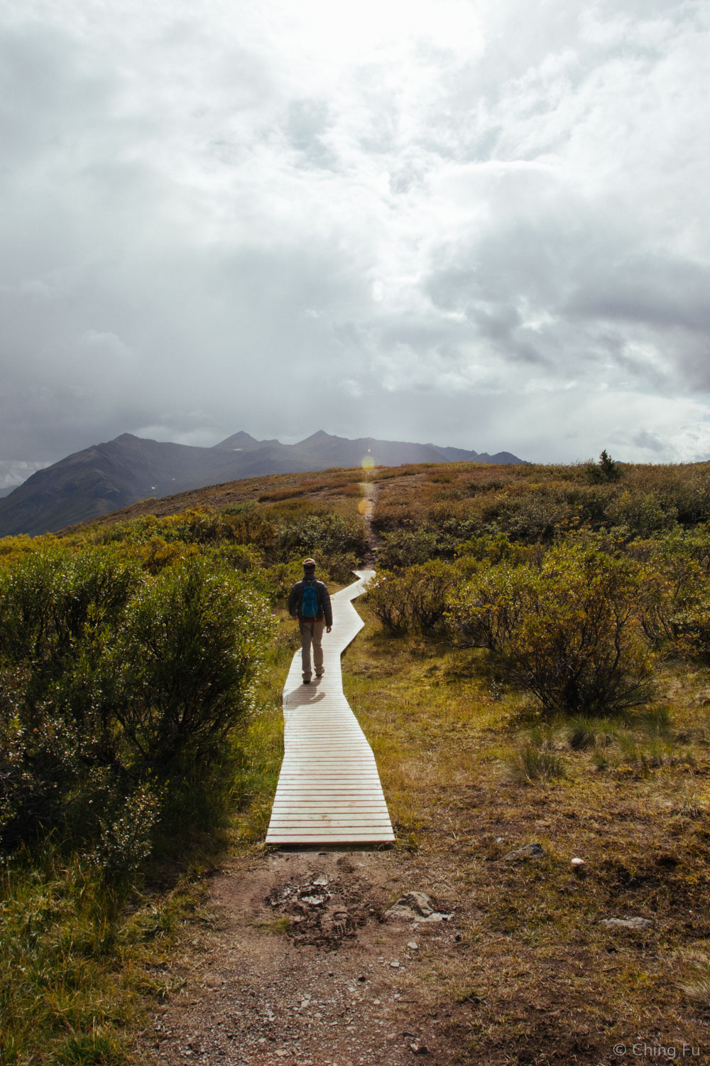 Goldensides trail in Tombstone Territorial Park.