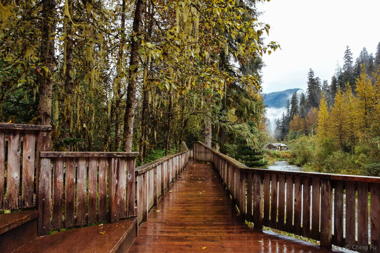 Fish Creek wildlife observation platform