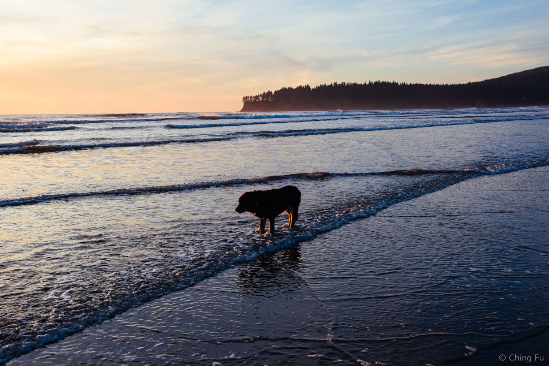 Tybee at Hobuck Beach.