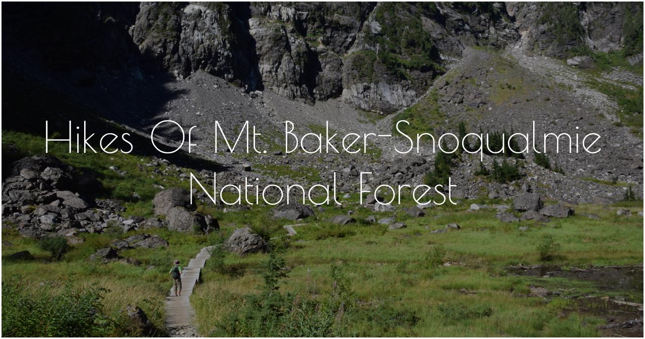 Hikes of Mt. Baker 50 Quality-0083.jpg