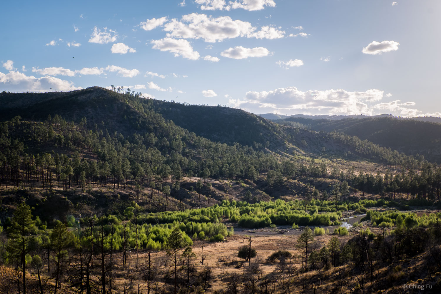 This portion of Gila Wilderness borders the national monument land.