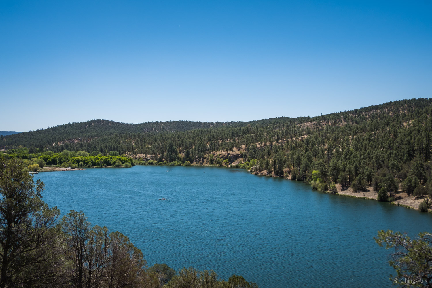 Lake Roberts in Gila National Forest
