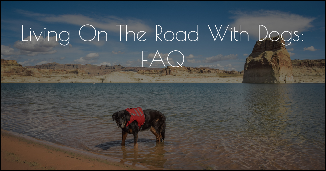 Living on the Road with Dogs FAQ DSC_4297.jpg