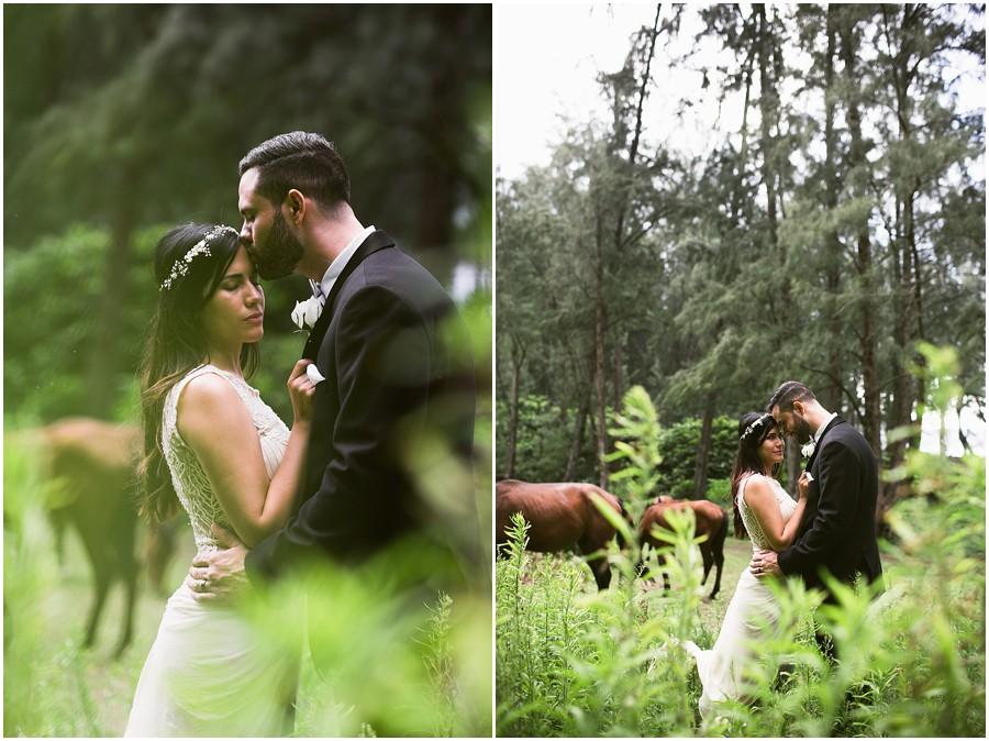 hawaii's best featured wedding photographer_0031.jpg