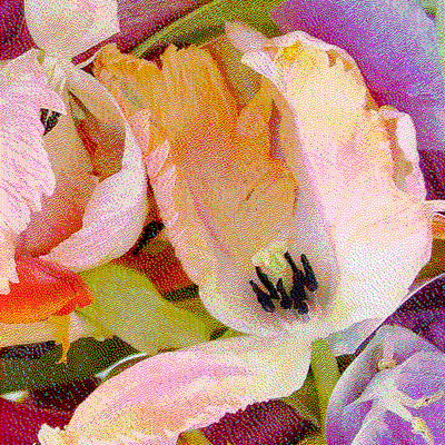 Untitled (Tulips)