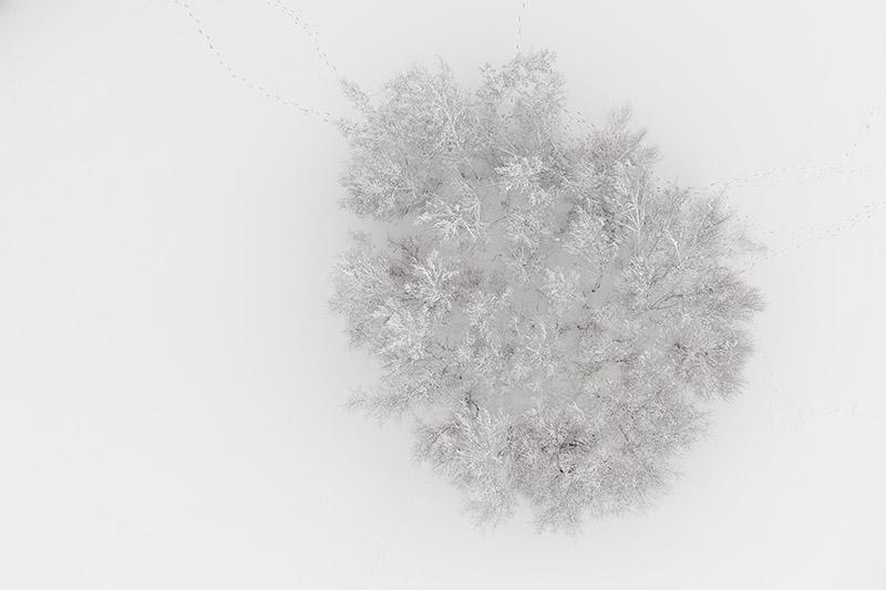 Seasons/Winter #01