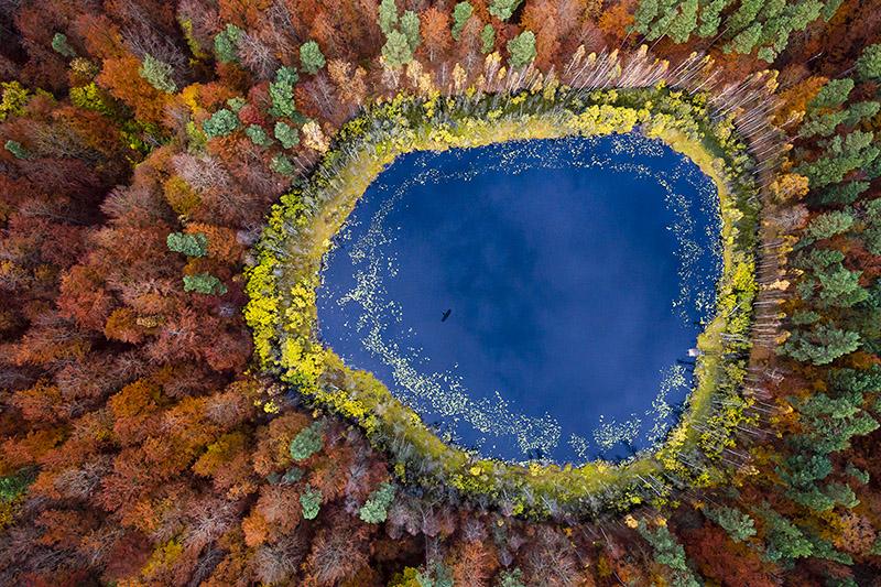 Seasons/Autumn #01