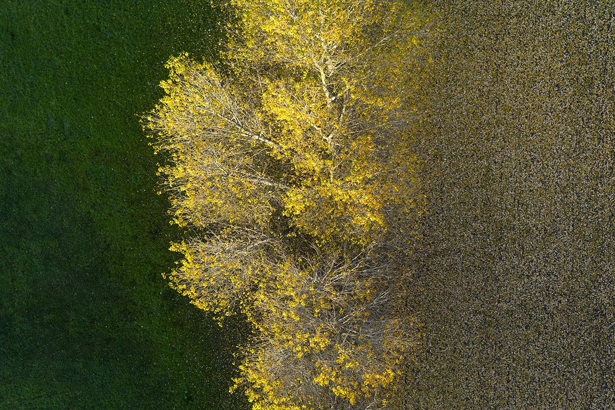Kacper-Kowalski_SideEffects_Seasons_Autumn_#32.jpg