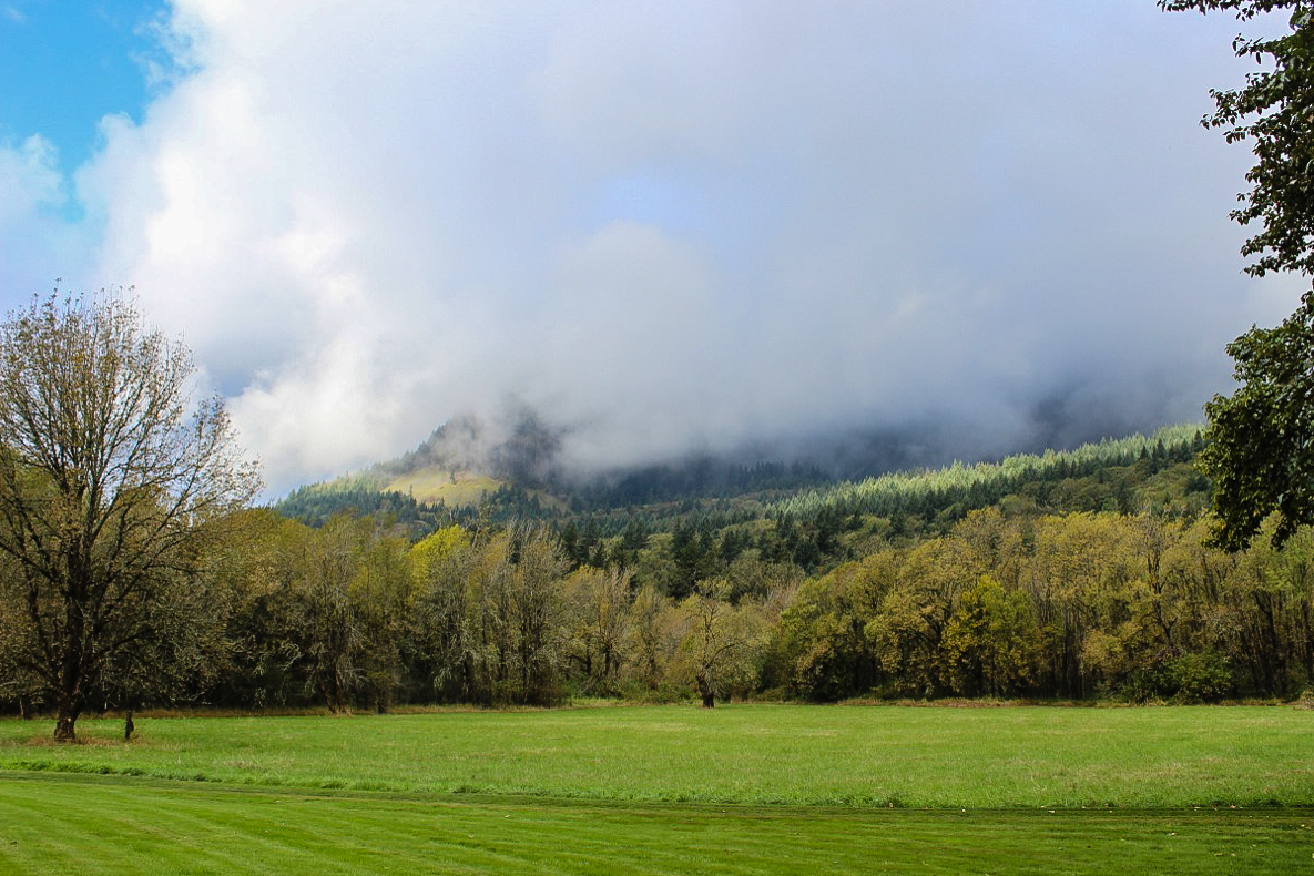 Clouds enshrouded the hillside behind us.