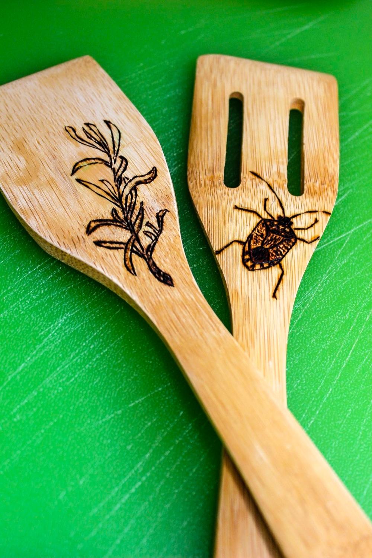 spoonsstinkbug.jpg