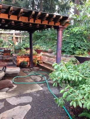 looking East through the pergola in August