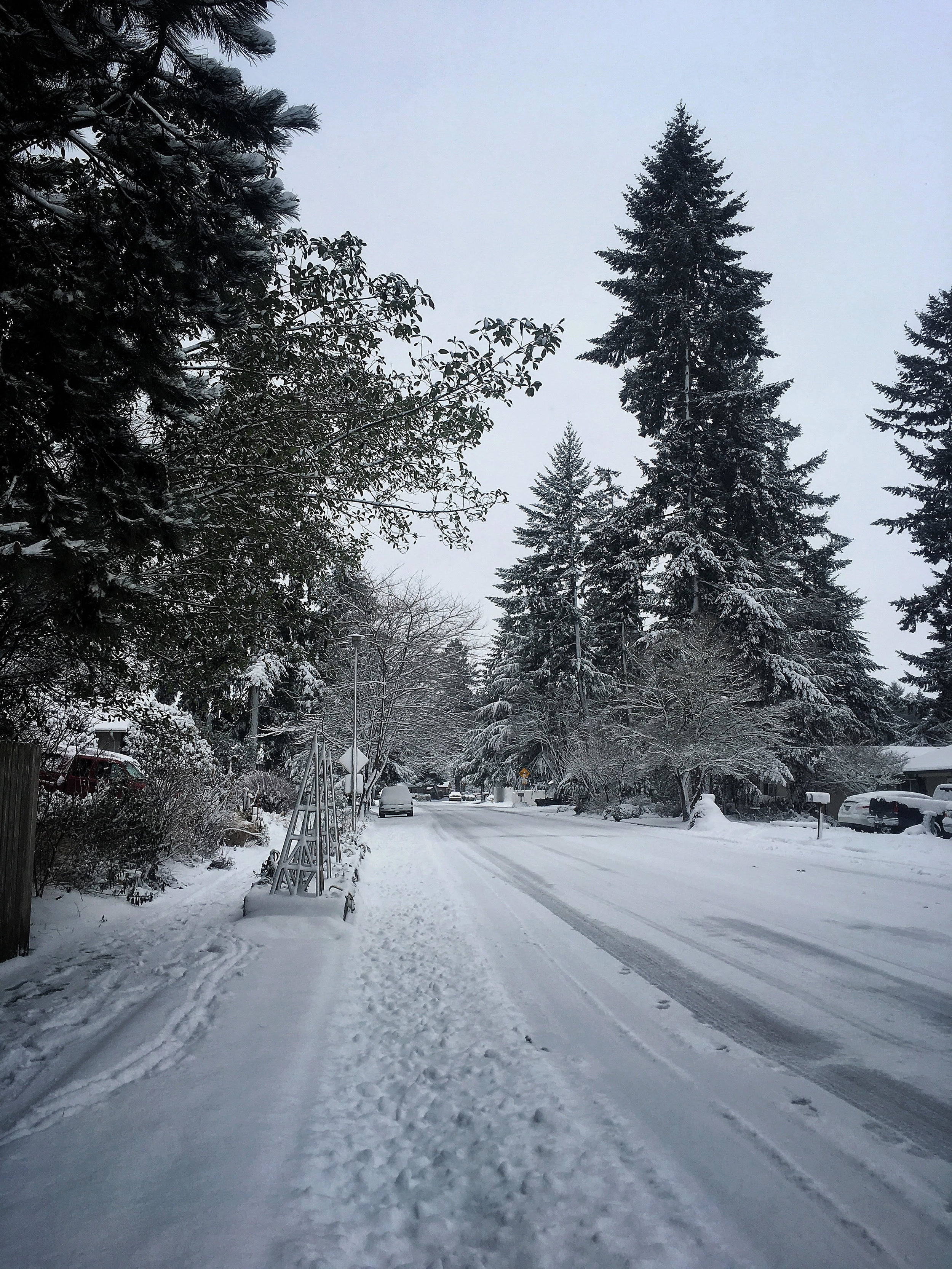 View of our street on Wednesday morning
