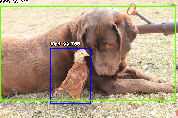 Dogspotting: Using Machine Learning to Draw Bounding Boxes around