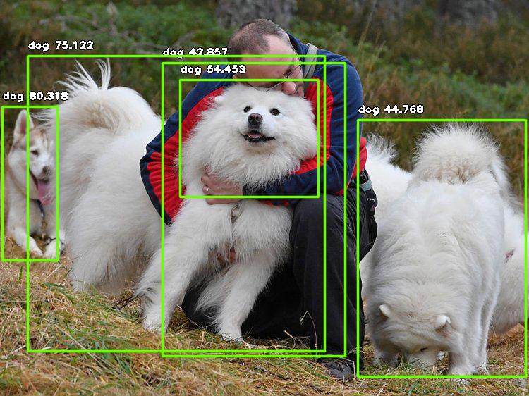 result_11.jpg