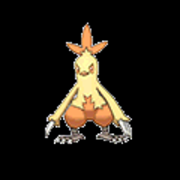 Combusken, fire type