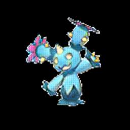 Maractus as water type