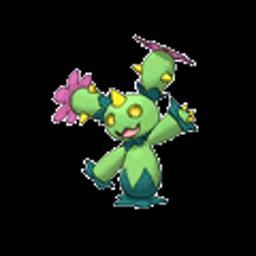 Maractus, grass type