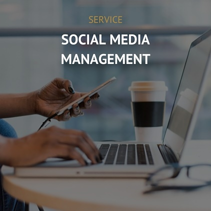 Monthly social media management of any platform