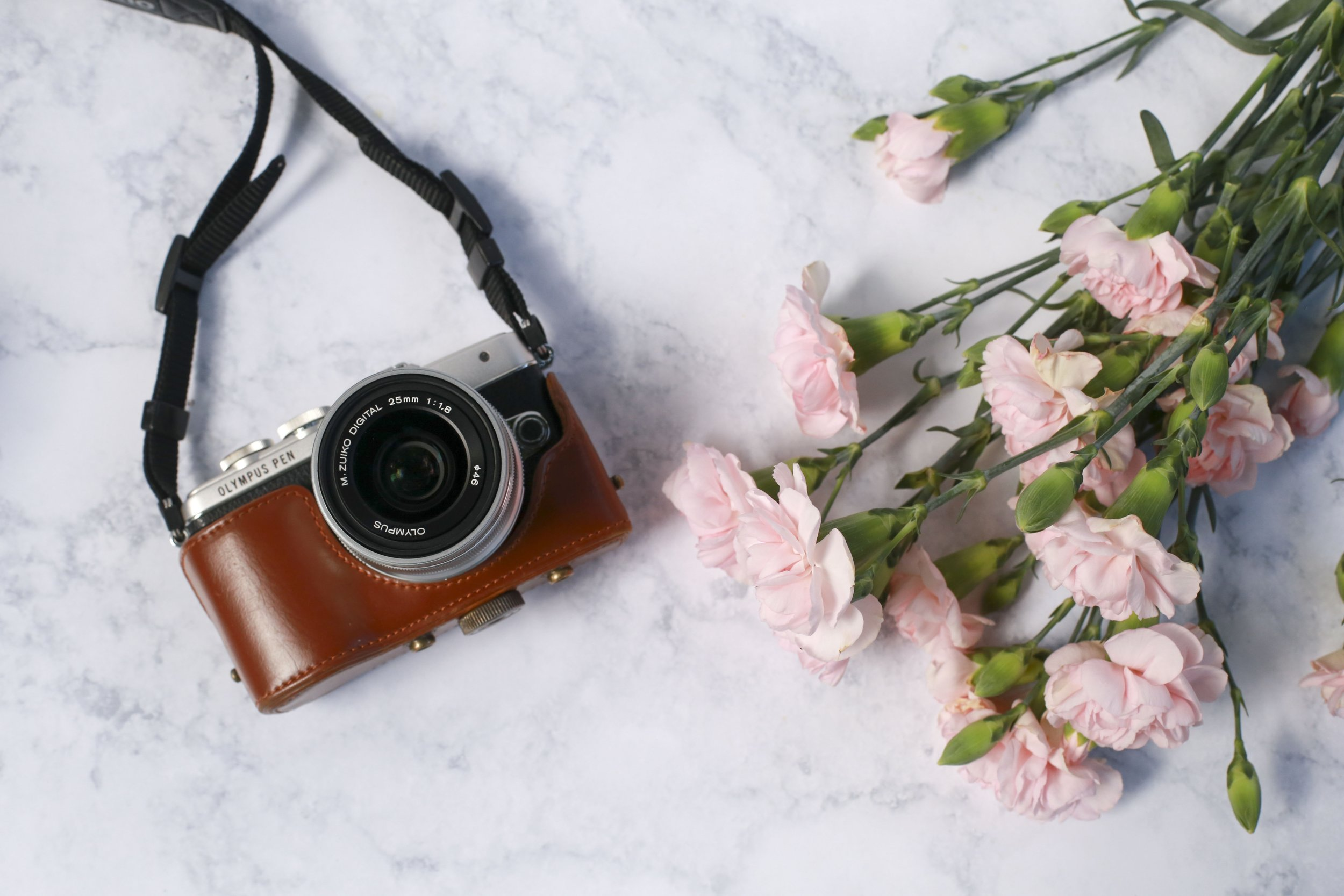 pink carnations and camera.jpg