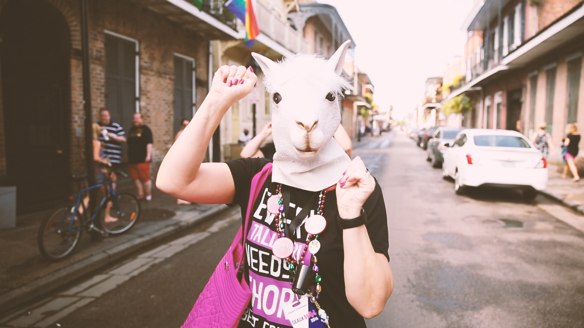 The Llama is the group's mascot.