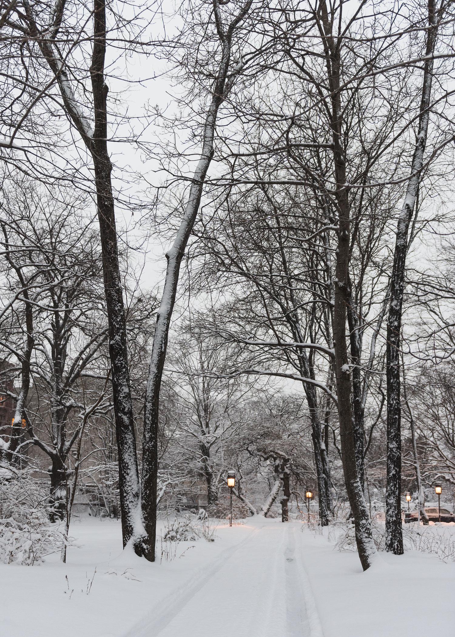2015_he_winter_0070.jpg